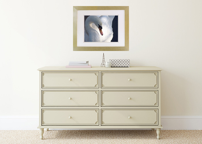 Display Sample Muted Swan Thoughts